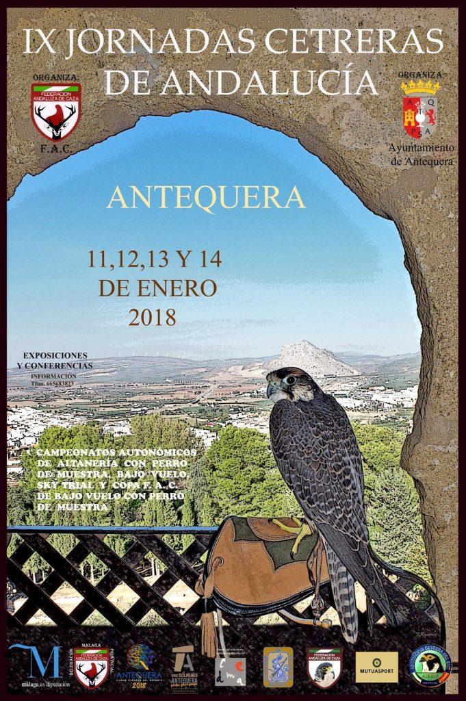 jornadas cetreras andalucia